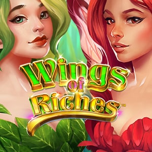 300x300 obg desktopwings of riches